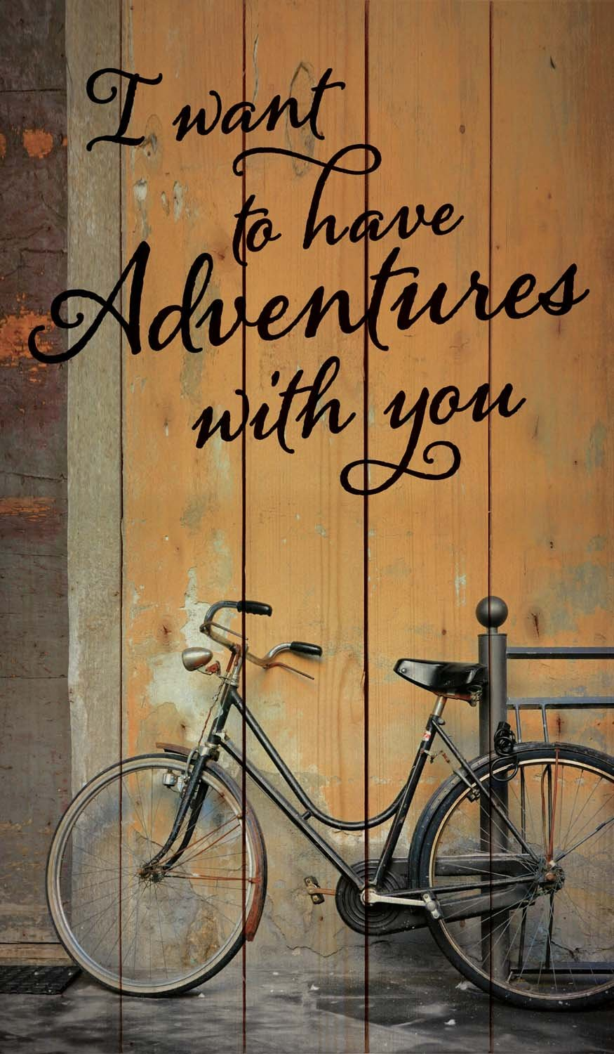 Graham Dunn I Want to Have Adventures with You Vintage Bike Design 24 x 14 Wood Pallet Wall Art Sign Plaque P