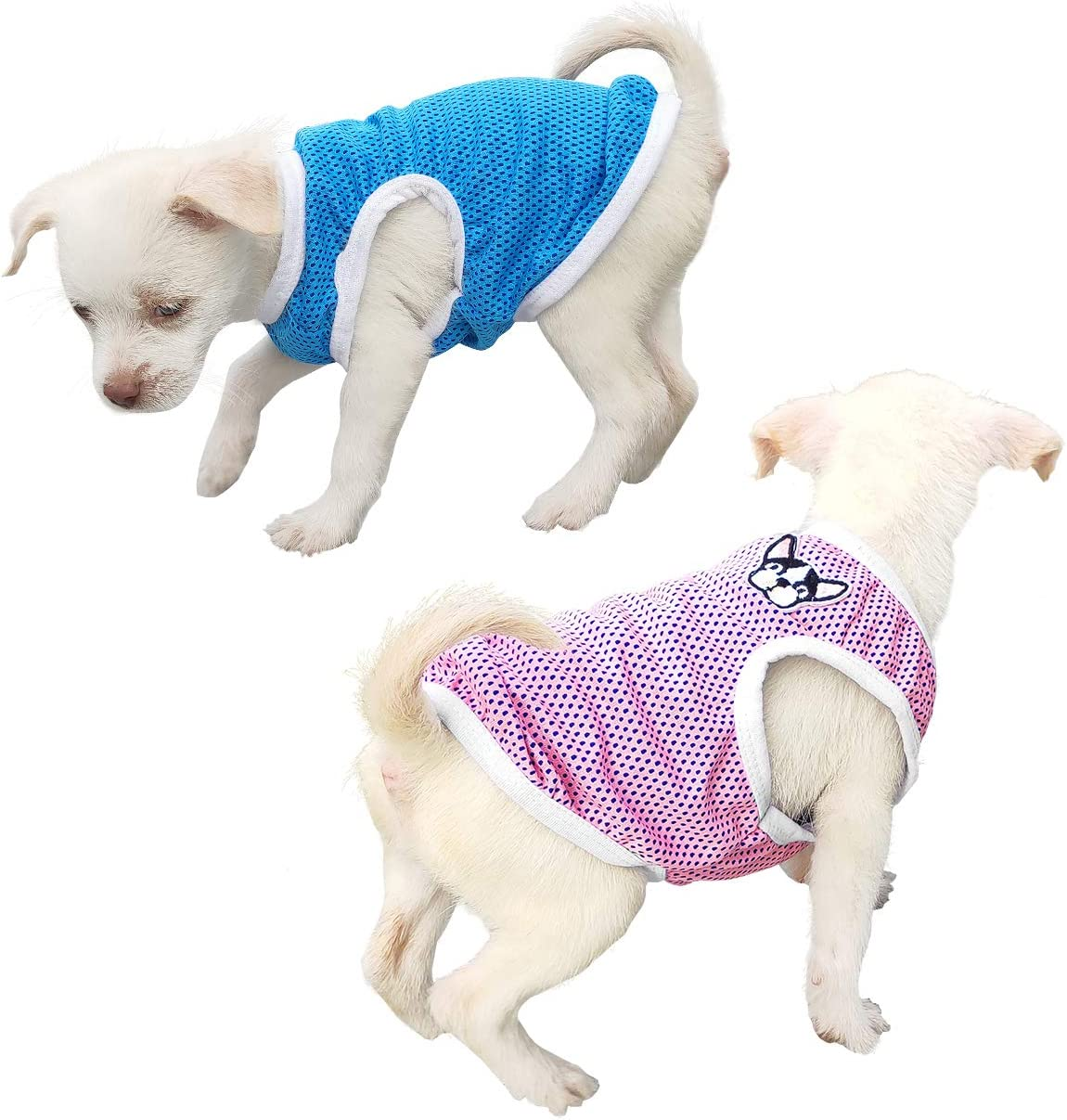 Gilet Sportivo Abbigliamento Estivo Magliette per Cani Maglietta Cani QiCheng /& LYS Gilet per Cani XS, 2 Pezzi Blu