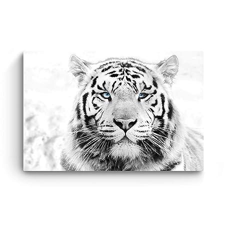 STARTONIGHT Canvas Wall Art – Daydream Tiger, Animals Framed 32 x 48 Inches