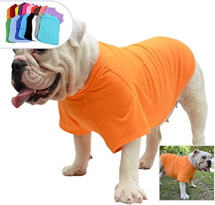 Medium or Large Birthday Occasion Gift French Bulldog Dog Gift Bag Small