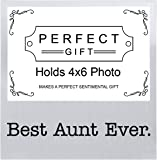 Best Aunt Ever Mother's Day Gifts for Aunt Silver Metal 4x6 Landscape Picture Frame