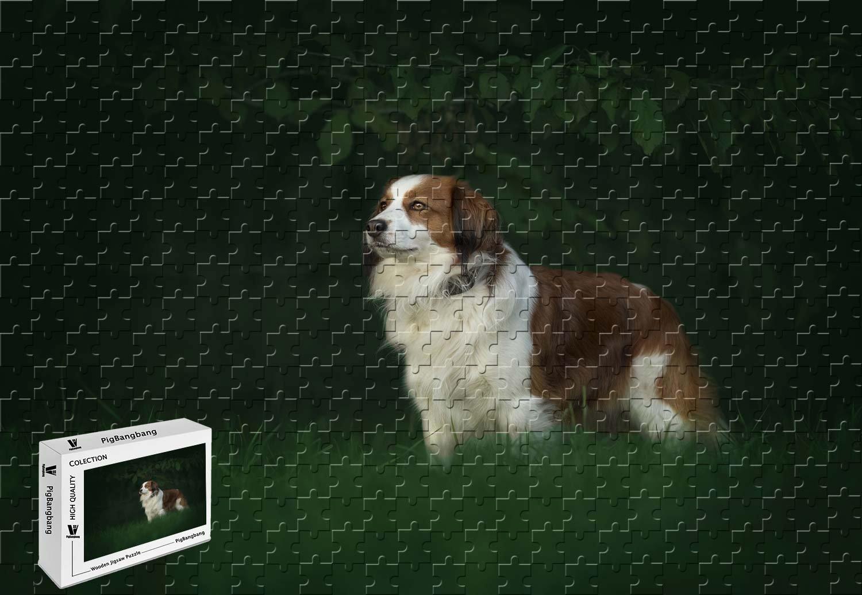 好きに PigBangbang,20.6 - X 15.1インチ、木製Lサイズ B07FVK3P99 - オーストラリアシェパード 2匹の子犬 - 500ピースジグソーパズル - B07FVK3P99, LeicesterSquare:7beeb06a --- 4x4.lt