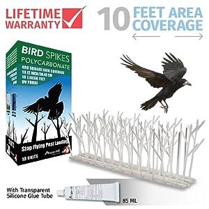 protection des plantes et lutte contre les nuisibles lutte contre les oiseaux guide d achat. Black Bedroom Furniture Sets. Home Design Ideas