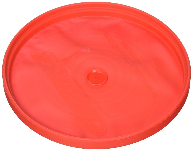 Disceez 8176008 Indoor//Outdoor Flying Disc 13cm