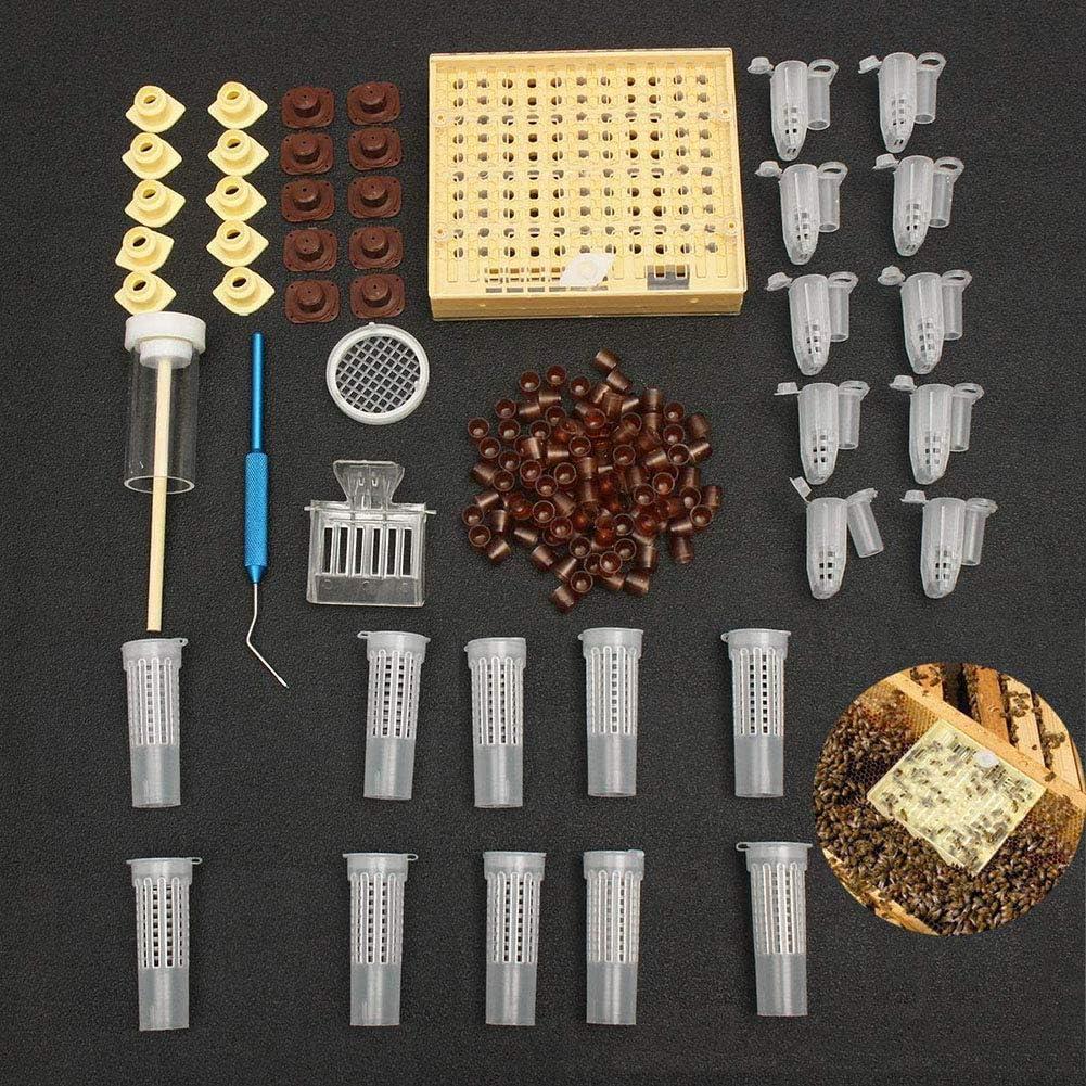 BJYX Herramientas De Apicultura Equipo Set Queen Rearing System Cultivador De Caja Plastico Bee Cell Copas Kit De Copa Queen Cage
