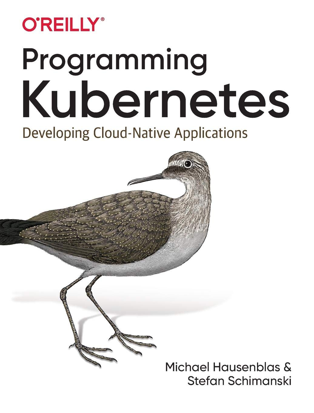 Programming Kubernetes: Developing Cloud-Native Applications by O'Reilly Media