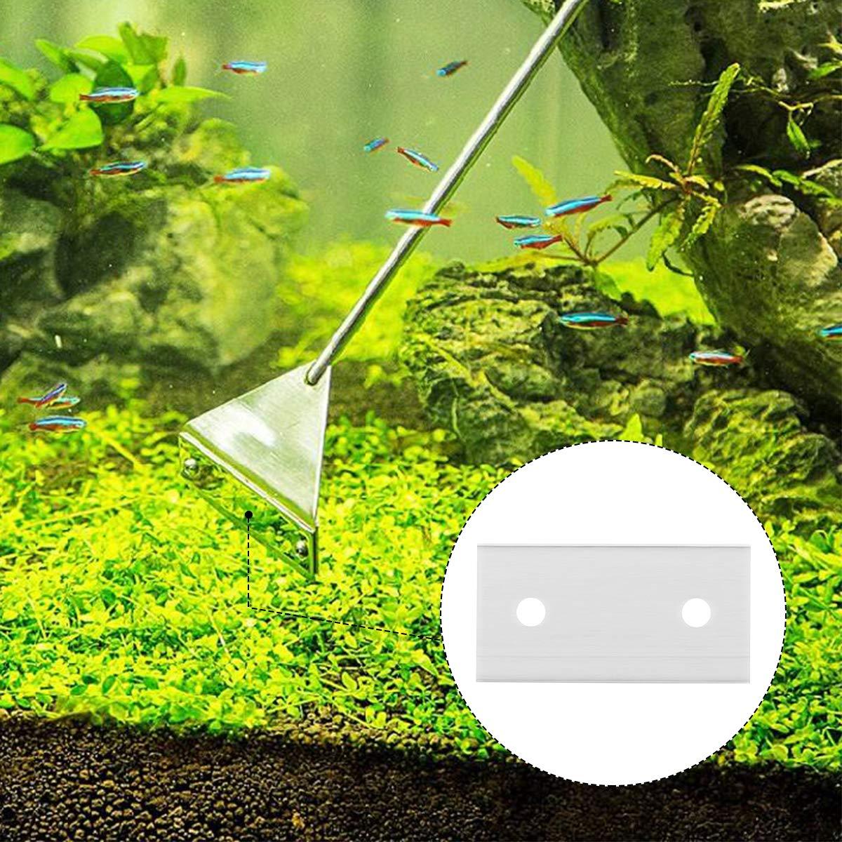 UEETEK dise/ño de acero inoxidable que garantiza resistencia a la corrosi/ón aptas para algas 10 cuchillas de afeitar para acuario