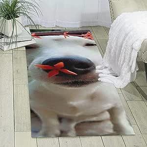 Hey Guy - Alfombra de salón con diseño de flores de perro ...