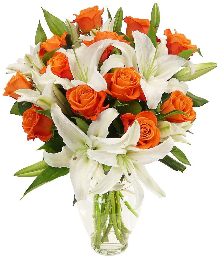 Amazon.com : Benchmark Bouquets Orange Roses and White Oriental ...