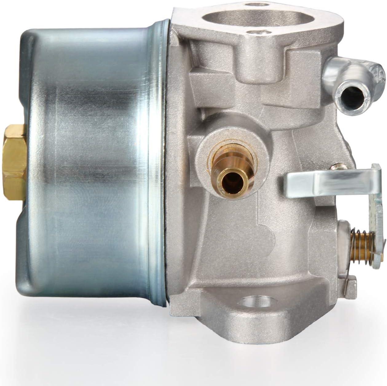 Dromedary 640025 Carburateur Tecumseh 193cc OHH55 OHH60 OHH65 ROT13152