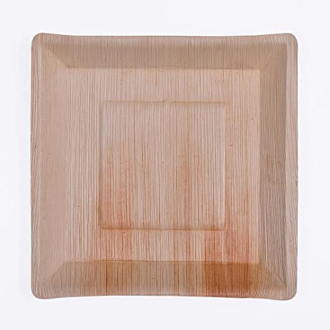25 Palm Leaf Plates - 10u0026quot; Angled Square - Natural Disposable Biodegradable & Amazon.com: 25 Palm Leaf Plates - 10