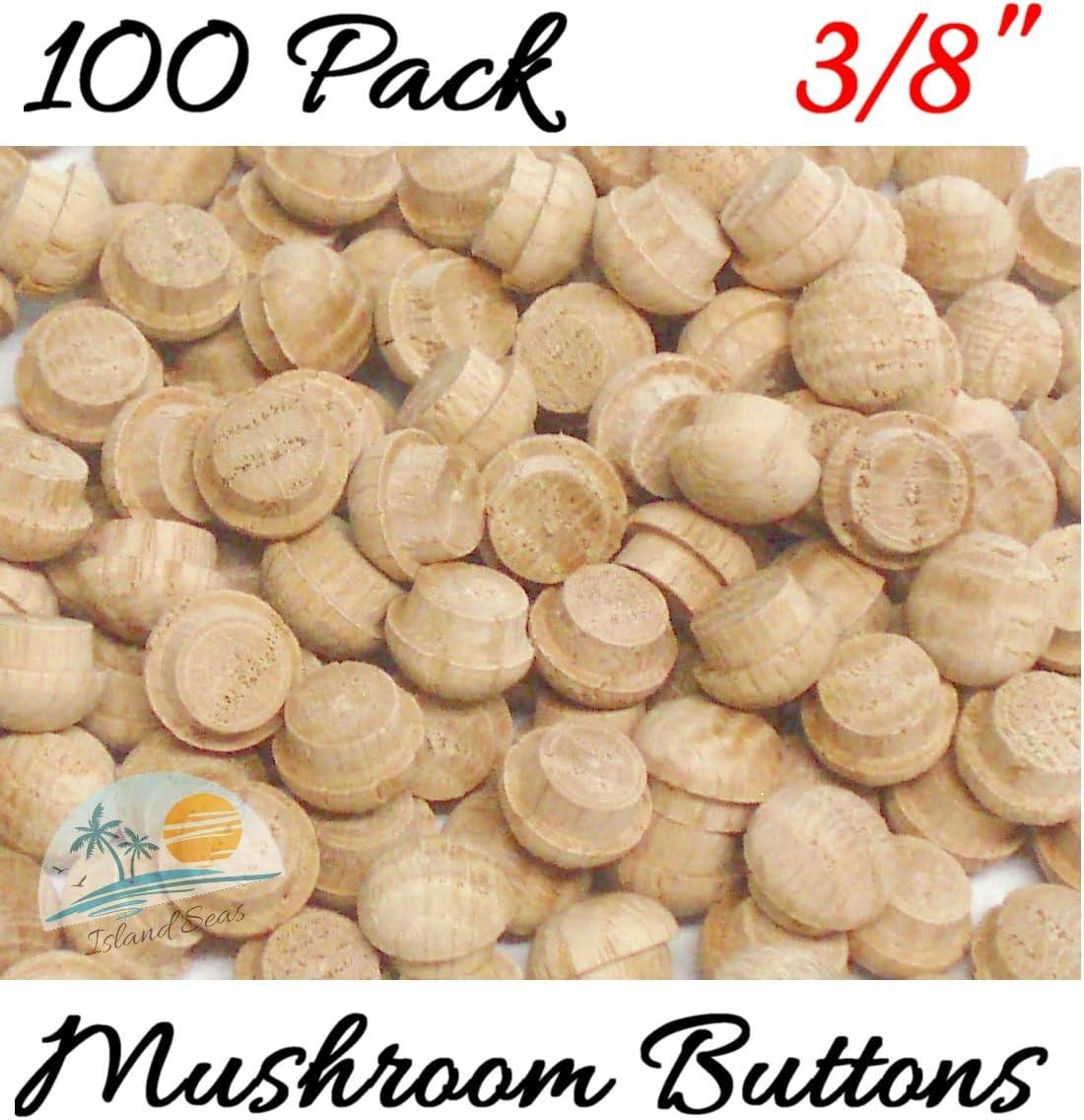 """25 Qty: 10 50 100 1//2/"""" Birch button // plug // mushroom // screw  hole cover"""