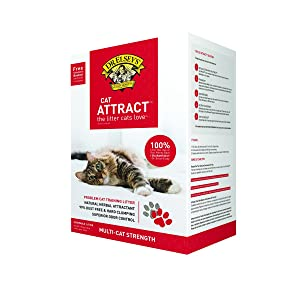 Dr. Elsey's Precious Cat Cat Attract Scoopable Cat Litter