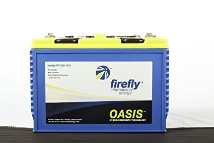 Amazon.com: Batería AGM de espuma de carbono de 12 V 116 Ah ...
