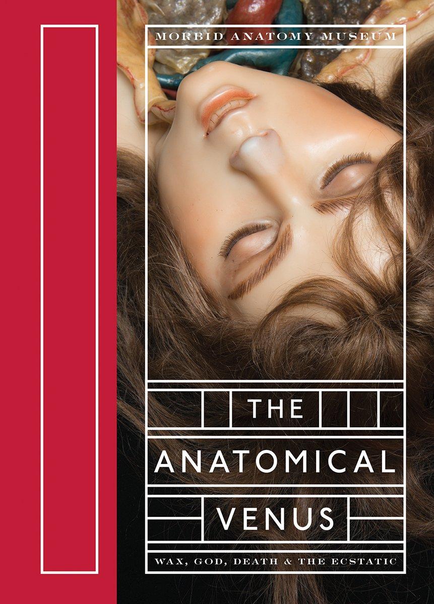 The Anatomical Venus Wax God Death The Ecstatic Joanna