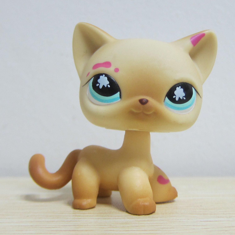 bes88 Littlest Pet Shop colección LPS de gato gatito con rosa pintura: Amazon.es: Juguetes y juegos