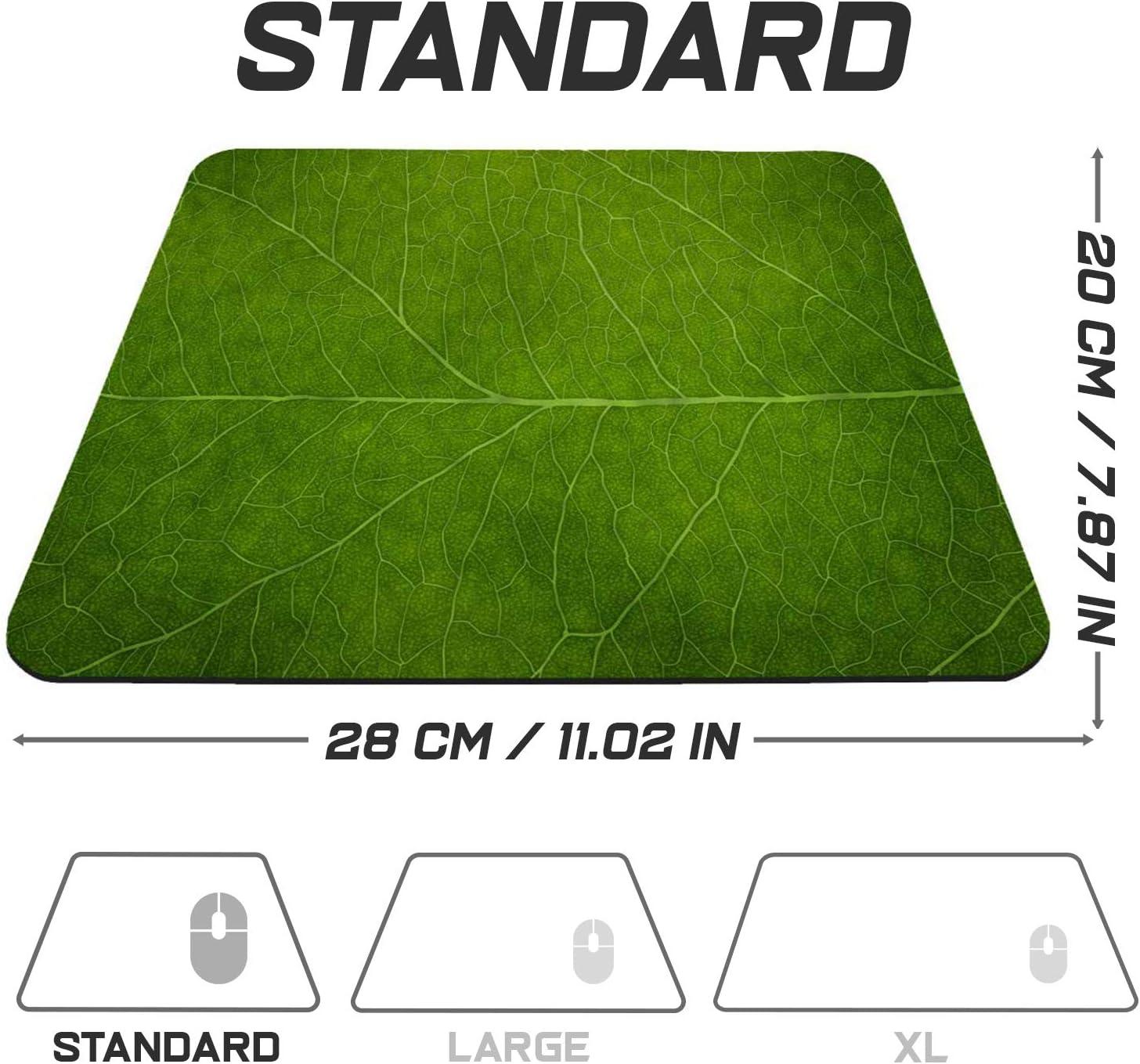 Surface sp/éciale am/éliore la Vitesse et la pr/écision Gamer Mouse Pad Vert Base en Caoutchouc Antid/érapant Surface 280 x 200 mm Sidorenko Tapis de Souris Gaming