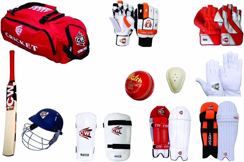 Cricket Helmet +Abdominal Guard +Leather Ball +Batting Gloves Cricket Bat Leg Guard +Arm /& Thigh Guard CW Sports Acemedy Team Cricket Kit Blue with Large kit Bag