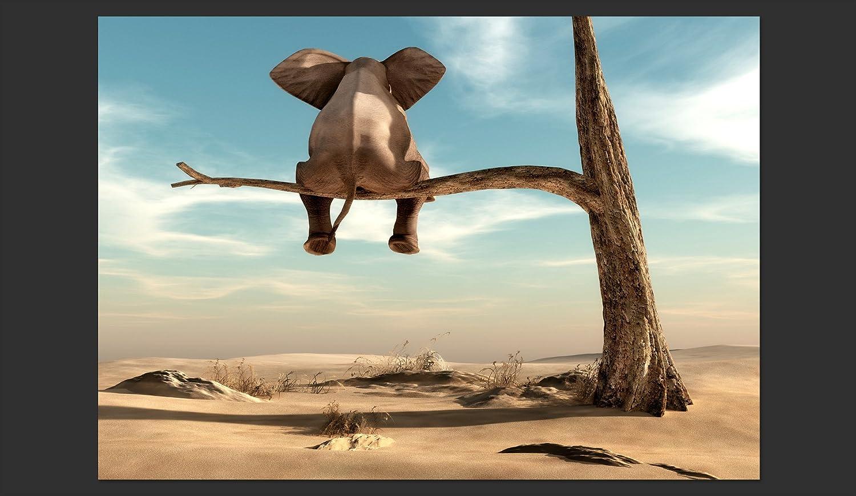 Murando - Fototapete 250x175 cm cm cm - Vlies Tapete - Moderne Wanddeko - Design Tapete - Wandtapete - Wand Dekoration - Elefant Baum Wüste Tier Abstrakt Natur Himmel für Kinder g-B-0033-a-a B06Y23KDQJ Wandtattoos & Wandbilder c4158f