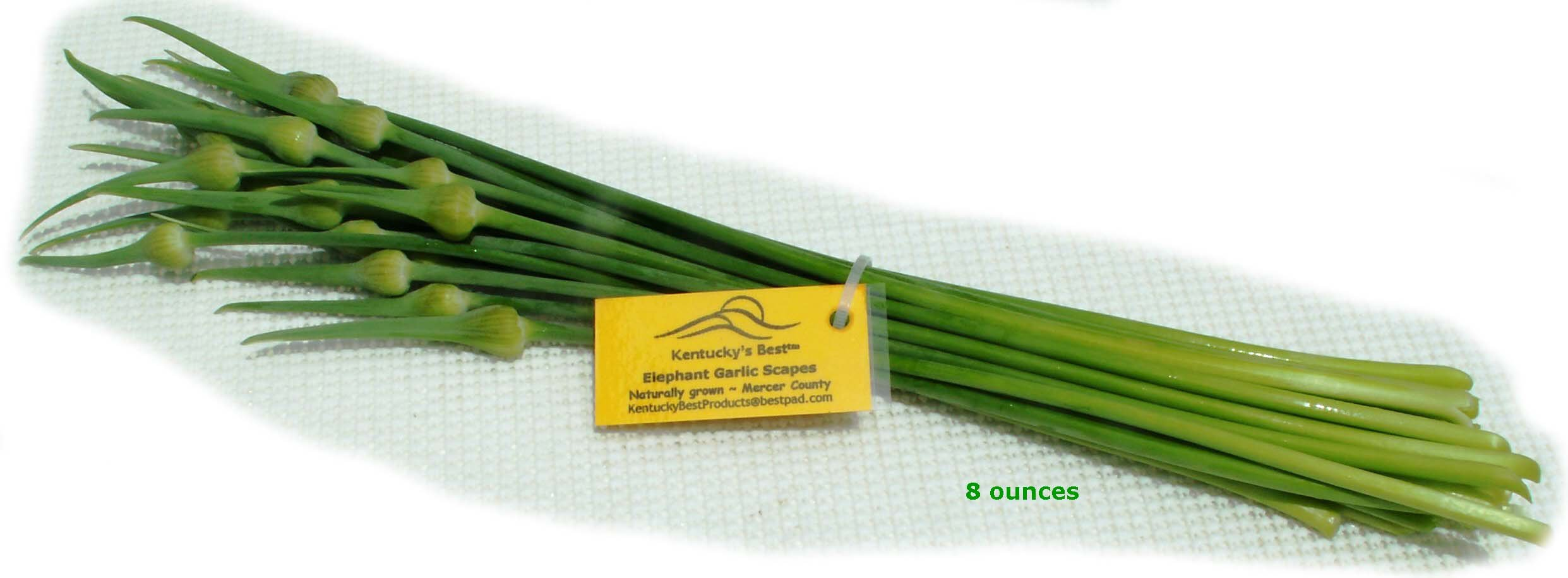 Kentucky's Best Gourmet Elephant Garlic Scapes, 8 Ounces Raw or Cooked, Non-GMO, All Natural