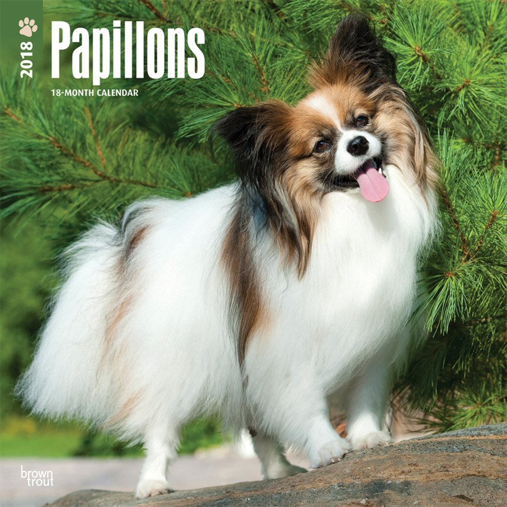 Papillons 2018 12 x 12 Inch Monthly Square Wall Calendar, Animals French Dog Breeds (Multilingual Edition) PDF Text fb2 book