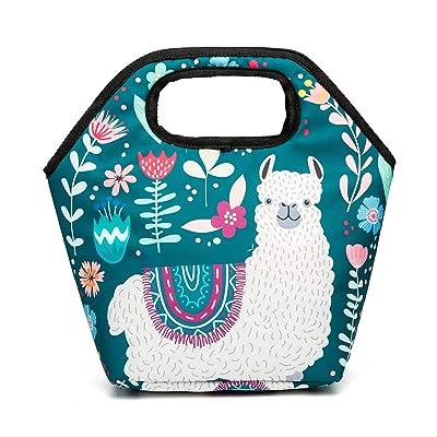 Noeoprene Lunch Bags Reusable Insulated Tote Llama Lunchbox Thermal Gourmet for Women Men Adults Kids Zipper Closure Alpaca: Kitchen & Dining [5Bkhe0202191]