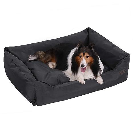 Amazon.com: Feandrea PGW28H - Sofá cama para mascotas ...