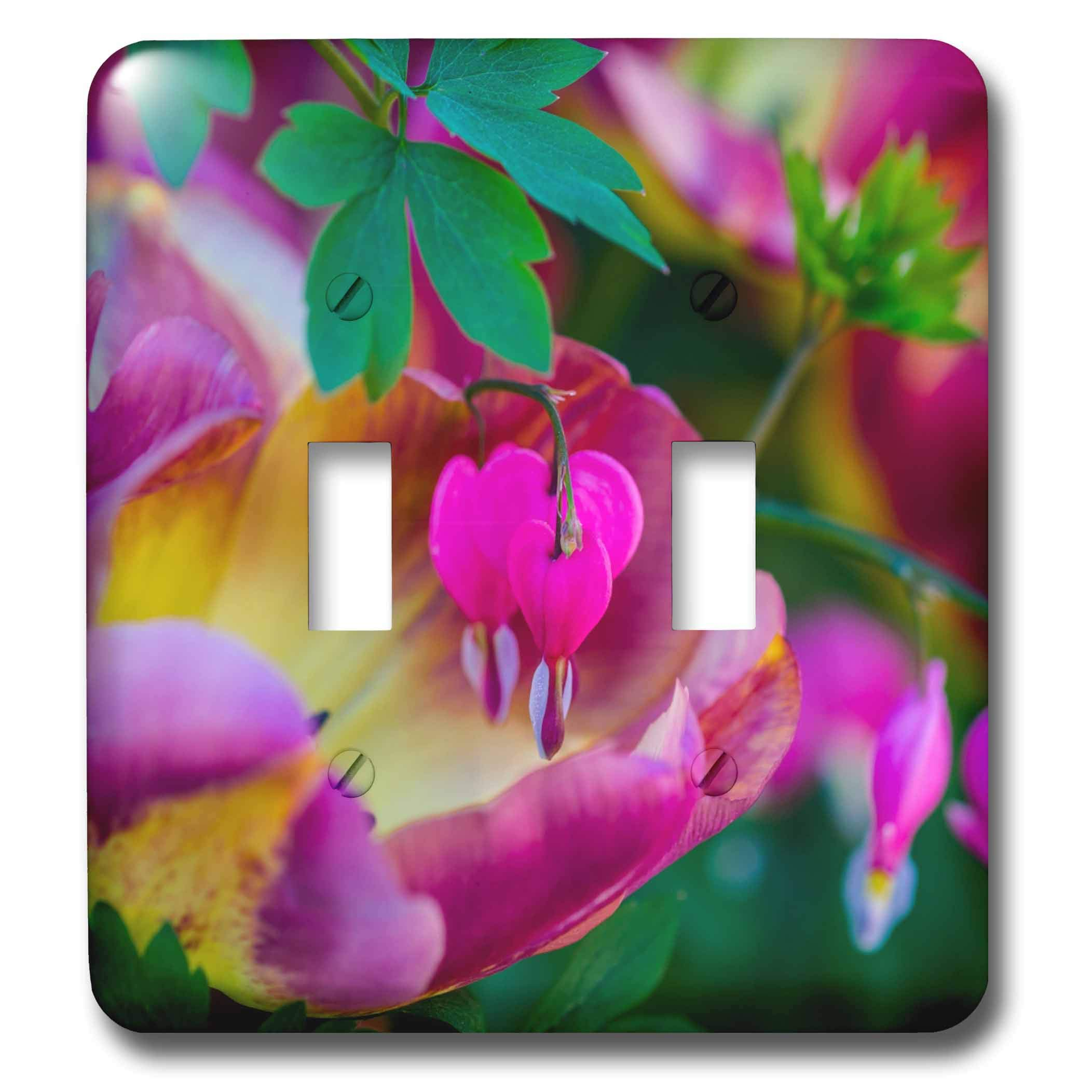 3dRose Alexis Photography - Flowers Bleeding Heart - Bleeding heart and tulip flowers. Colorful positive romantic scene - Light Switch Covers - double toggle switch (lsp_288820_2)