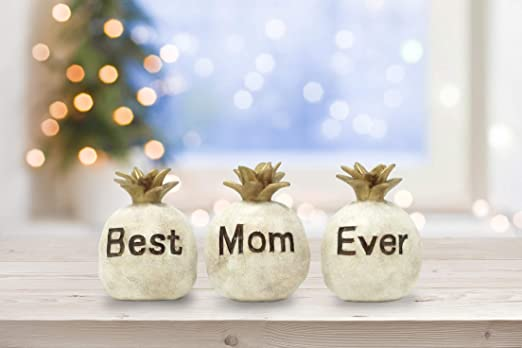 Amazon Com Fole Best Mom Ever Pineapples Gifts For Mom