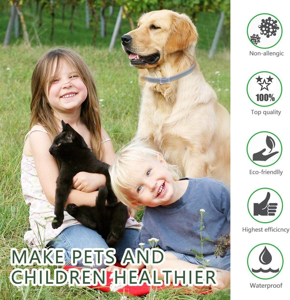 LUCKYHH Collar de pulgas y garrapatas para Perros y Gatos
