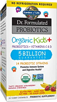 Garden of Life-Dr. Formulated Probiotics Organic Kids