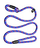 Coolrunner Durable Dog Slip Rope Leash, 5 FT Dog