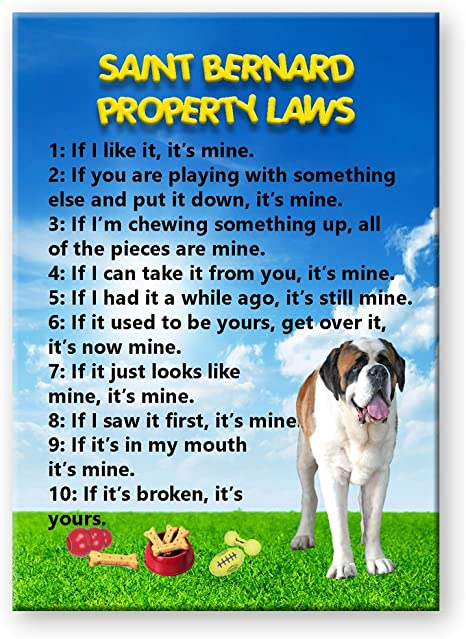 SAINT BERNARD Property Laws Magnet Personalized