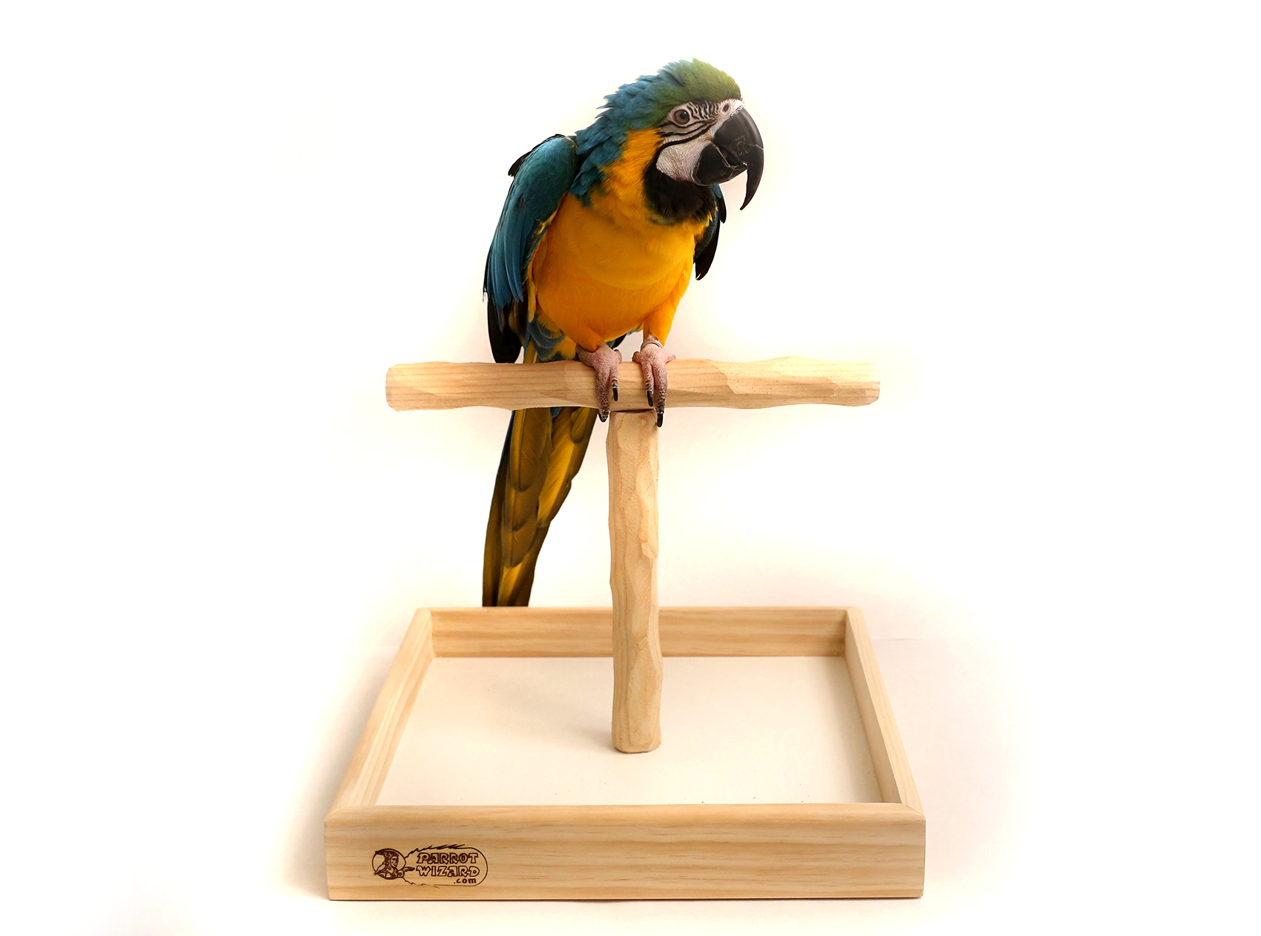 Deluxe Large Tabletop NU Perch - Parrot T Perch Stand Lg by Parrot Wizard