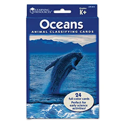 Learning Resources Classifying Cards Oceans: Toys & Games