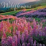 Wildflowers 2017 Wall Calendar