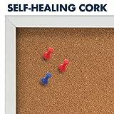 Quartet Cork Board, 1 Door, Bulletin