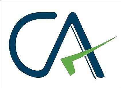 samritika ventures reflective vinyl ca charted accountant