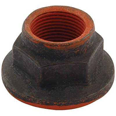 "Allstar ALL72155 Differential Pinion Nut for Ford 8.8"" and Standard Ford 9"" Differential: Automotive"