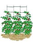 EcoTrellis, Expandable Trellis,N-Shape Weave Trellis,Plant Ladder,Support Ladder,Tomato Trellis,Cucumber Trellis, 5Ft High,1 Set
