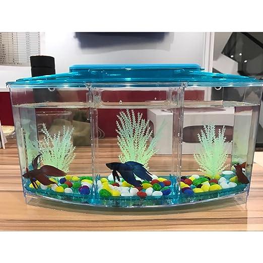 Legendog Acuario de Peces Pequeños LED Que Enciende La Mini Caja Plástica del Acuario del Tanque de Pescados para La Decoración del Escritorio Casero: ...
