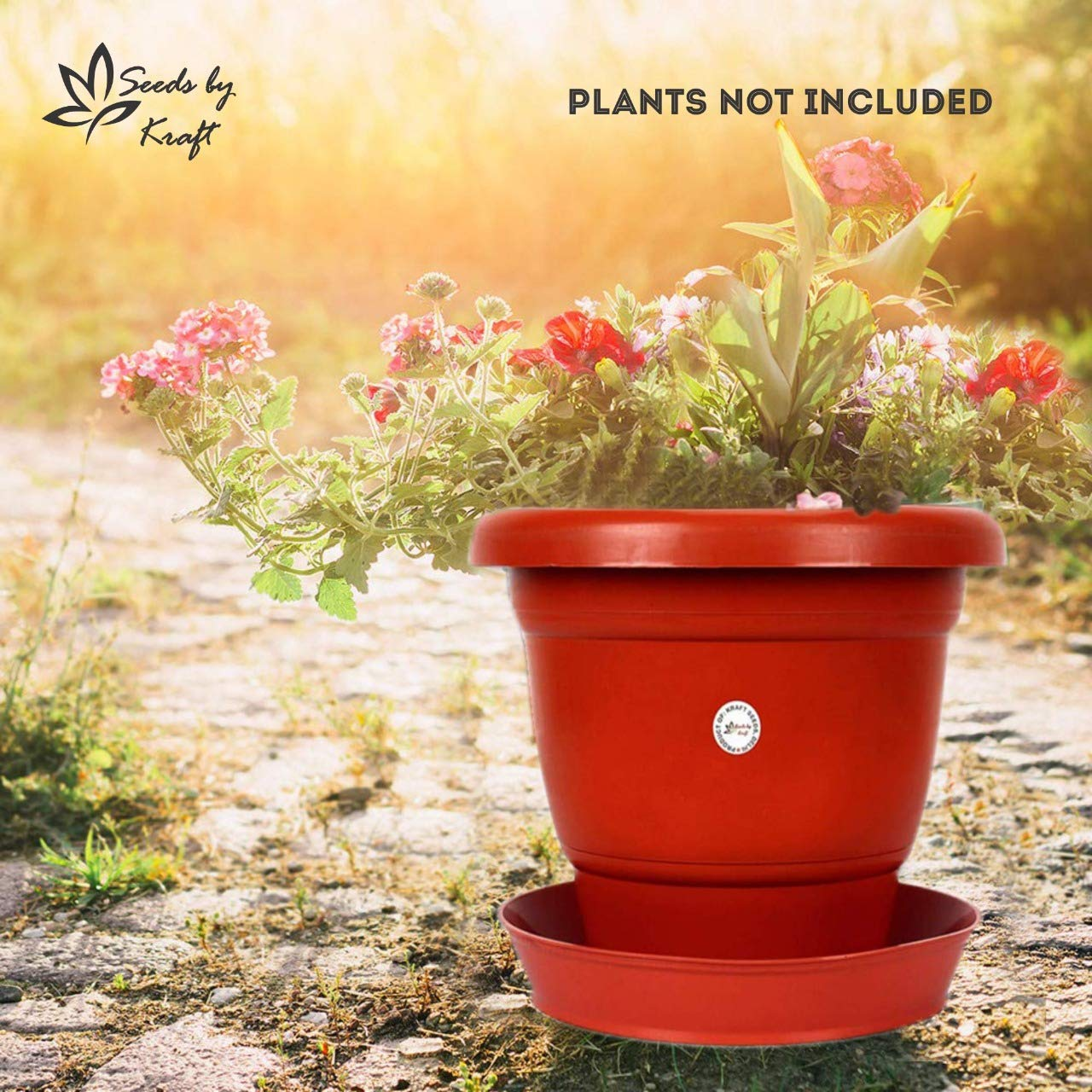 Seeds Gamla/Planter/Pot 8-inch (5 Pots) with Bottom Plate/Tray