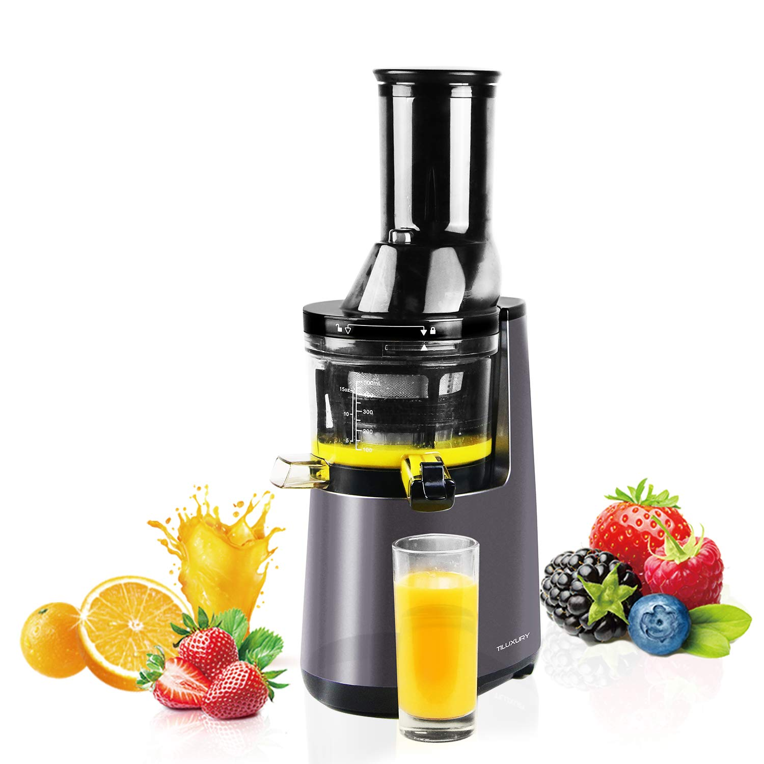 Amazon.com: HYD-Parts Slow Masticating Juicer extractor with ...