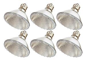 Pack Of 6 60PAR30/FL 120V 60 Watt High Output (75W Replacement) 60W PAR30 Flood 40 Degree Beam Spread 120 Volt Halogen Par 30 Light Bulbs