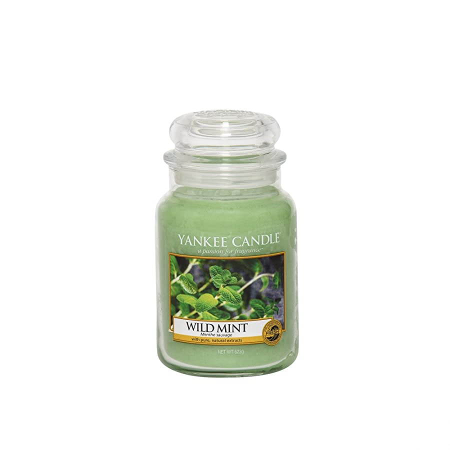 yankee candle it Menta Selvatica