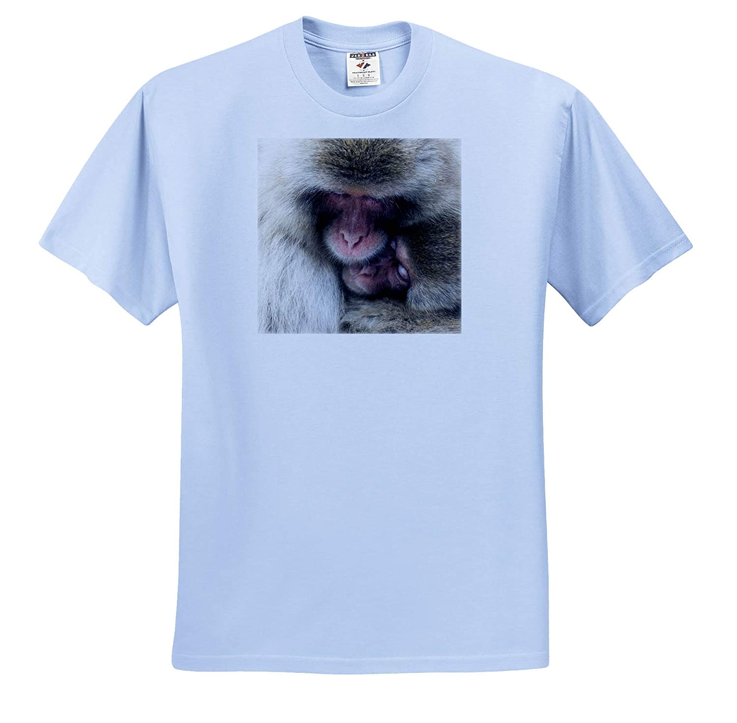 ts/_312764 3dRose Danita Delimont Snow Monkeys Huddle Together Adult T-Shirt XL Japan Monkeys Yamanouchi