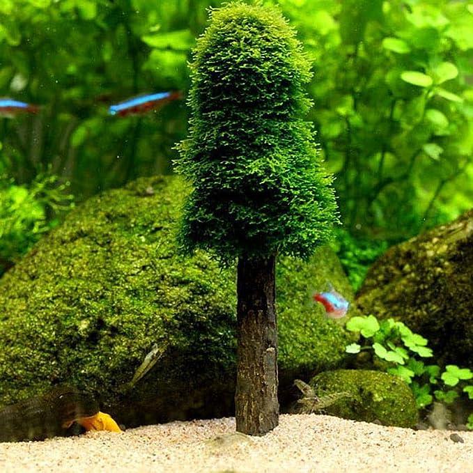 UEETEK - Decoración para acuario, pecera, árbol de Navidad, musgo, planta, cultivo: Amazon.es: Productos para mascotas