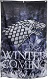 Game of Thrones- Stark Winter is Coming Banner Fabric Poster 30 x 50in