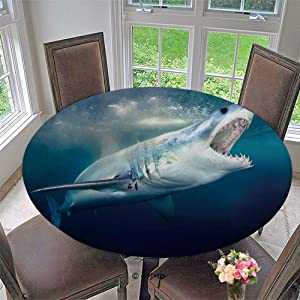 Homenon Elastic Edged Table Cover, Round Tables Tablecloth Table Cloth, A Mako Shark with Mouth Open Showing Teeth Waterproof Table Pads