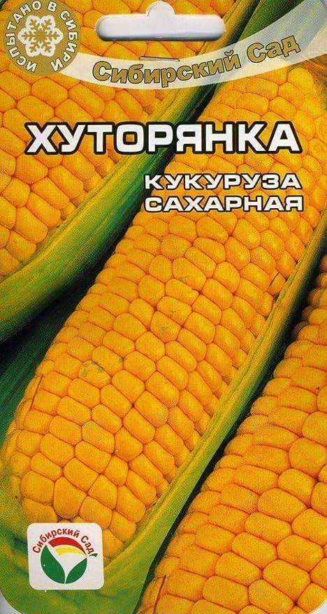 AGROBITS Hutoryanka de maíz (S Garden): Amazon.es: Jardín